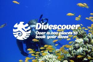 Divescover